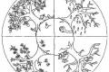 Mandala da colorare : le stagioni