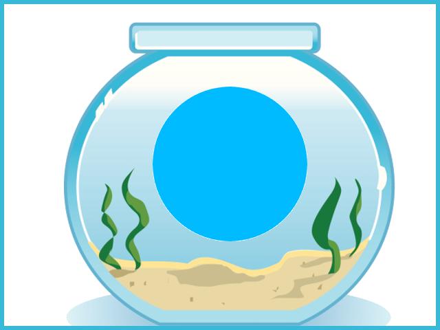 Geometria impariamo le figure con i pesci mamma e casalinga for Boccia pesci