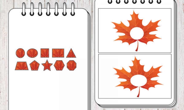 Le foglie e le forme geometriche