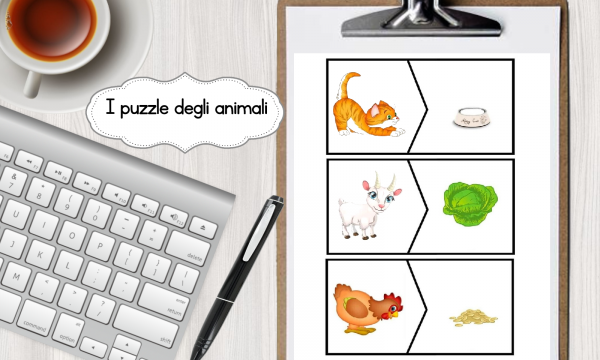 Cosa mangiano gli animali?