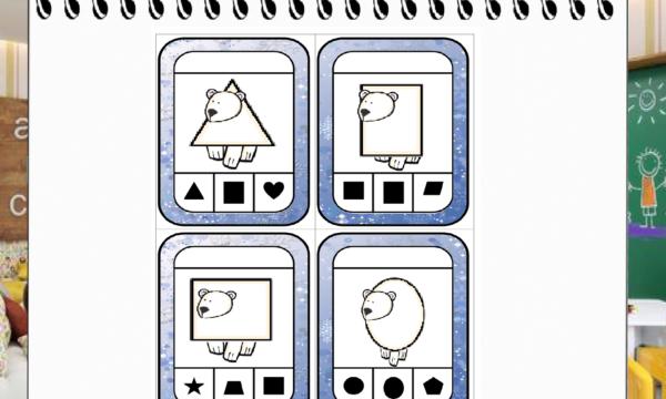 La geometria degli orsi polari